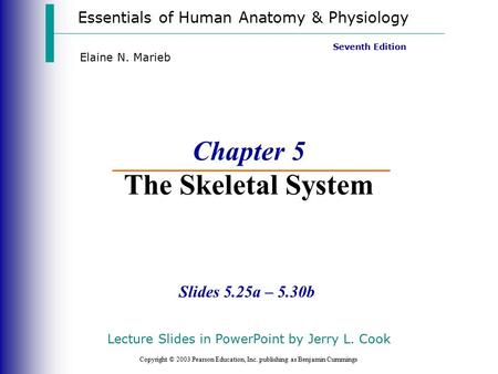 Essentials of Human Anatomy & Physiology Copyright © 2003 Pearson Education, Inc. publishing as Benjamin Cummings Slides 5.25a – 5.30b Seventh Edition.