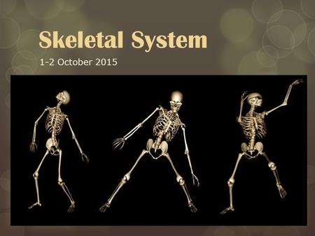 Skeletal System 1-2 October 2015. Our bones are window to our health, revealing secrets about our lives past & current.