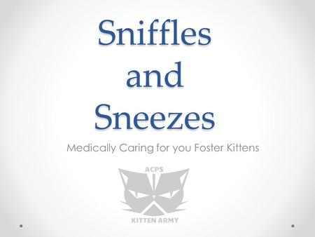 Sniffles and Sneezes Medically Caring for you Foster Kittens.