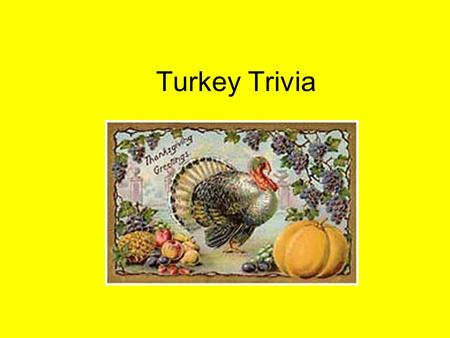 Turkey Trivia The American Indian name for turkey was: A. Firkee B. Tumtum C. Flybird.