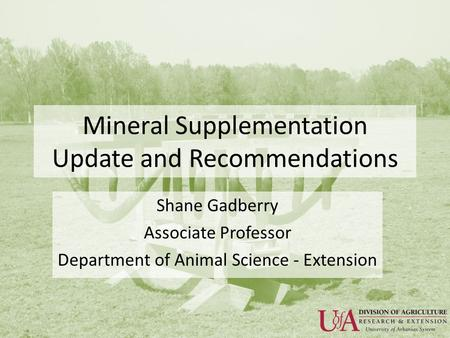 Mineral Supplementation Update and Recommendations Shane Gadberry Associate Professor Department of Animal Science - Extension.