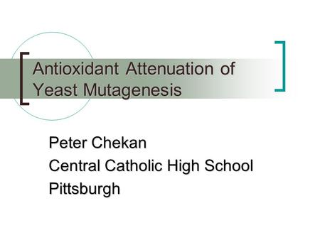 Antioxidant Attenuation of Yeast Mutagenesis Peter Chekan Central Catholic High School Pittsburgh.