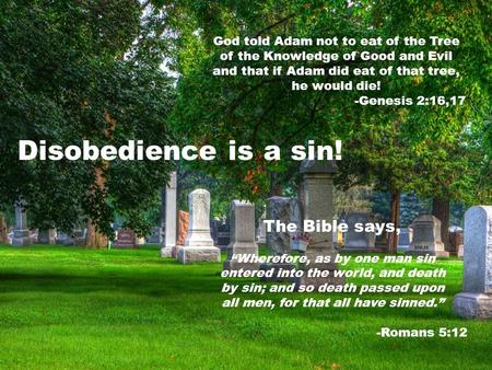 God told Adam not to eat of the Tree of the Knowledge of Good and Evil and that if Adam did eat of that tree, he would die! -Genesis 2:16,17 Disobedience.