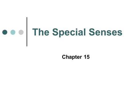 The Special Senses Chapter 15. GUSTATORY SENSATION.