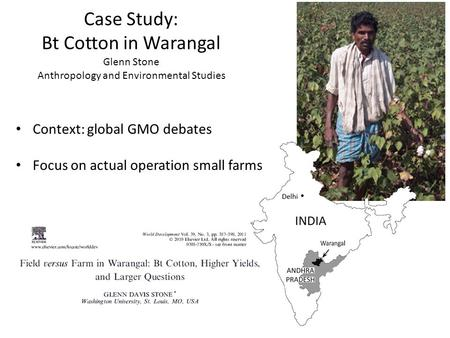 Case Study: Bt Cotton in Warangal Glenn Stone Anthropology and Environmental Studies Context: global GMO debates Focus on actual operation small farms.