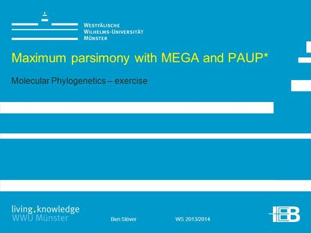 Ben Stöver WS 2013/2014 Maximum parsimony with MEGA and PAUP* Molecular Phylogenetics – exercise.