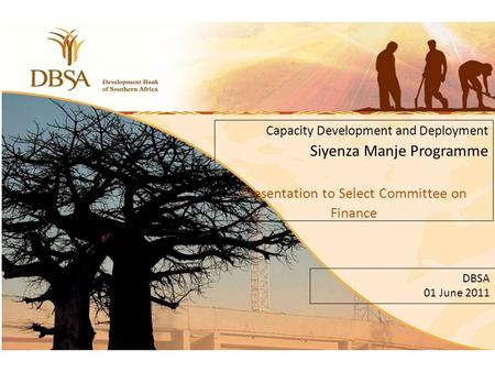 Click to edit Master subtitle style 11 Capacity Development and Deployment Siyenza Manje Programme Presentation to Select Committee on Finance DBSA 01.