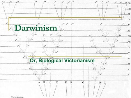 "Darwinism Or, Biological Victorianism. Darwin, his own ""origins"" Charles Darwin, 1809-1882. Origin, 1859. Born into union of two High Capitalist families."