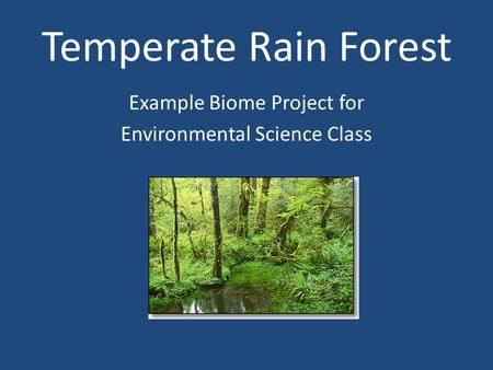 Temperate Rain Forest Example Biome Project for Environmental Science Class.