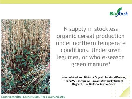 N supply in stockless organic cereal production under northern temperate conditions. Undersown legumes, or whole-season green manure? Anne-Kristin Løes,