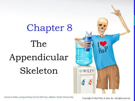 Copyright © John Wiley & Sons, Inc. All rights reserved. Chapter 8 The Appendicular Skeleton Lecture slides prepared by Curtis DeFriez, Weber State University.