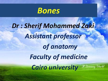 Bones Dr : Sherif Mohammed Zaki Assistant professor of anatomy Faculty of medicine Cairo university.
