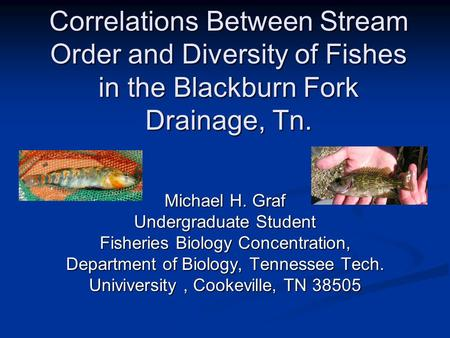 Correlations Between Stream Order and Diversity of Fishes in the Blackburn Fork Drainage, Tn. Michael H. Graf Undergraduate Student Fisheries Biology Concentration,