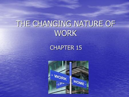 THE CHANGING NATURE OF WORK CHAPTER 15.  E4rf1A  E4rf1A.
