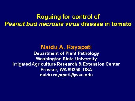 Roguing for control of Peanut bud necrosis virus disease in tomato Naidu A. Rayapati Department of Plant Pathology Washington State University Irrigated.