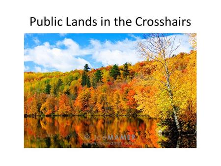 "Public Lands in the Crosshairs. Land, Water, Woods, Wildlife School Trust Lands Is it ""cash for kids"" or ""cash 'em out?"" DNR management of 2.5 million."