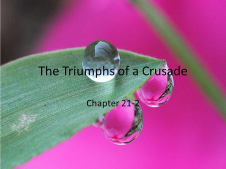 The Triumphs of a Crusade Chapter 21-2. Riding for Freedom In May 1961, a mob firebombed a busload of volunteers, known as freedom riders, in Anniston,