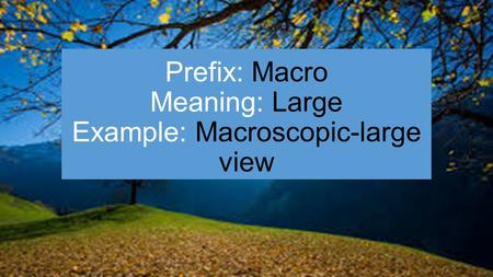 Prefix: Macro Meaning: Large Example: Macroscopic-large view.