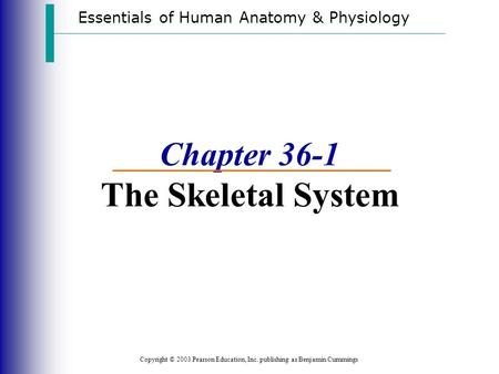 Essentials of Human Anatomy & Physiology Copyright © 2003 Pearson Education, Inc. publishing as Benjamin Cummings Chapter 36-1 The Skeletal System.