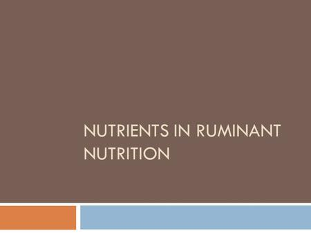 NUTRIENTS IN RUMINANT NUTRITION. Nutrients  Nutrition is the series of processes by which an animal takes in and assimilates feed components for promoting.