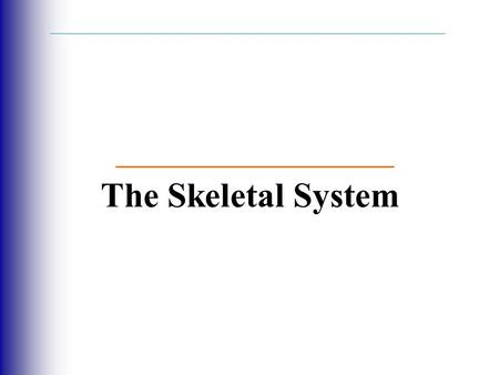 The Skeletal System.  Parts of the skeletal system  Bones (skeleton)  Joints  Cartilages  Ligaments (bone to bone)(tendon=bone to muscle)  Divided.