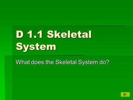 D 1.1 Skeletal System What does the Skeletal System do?