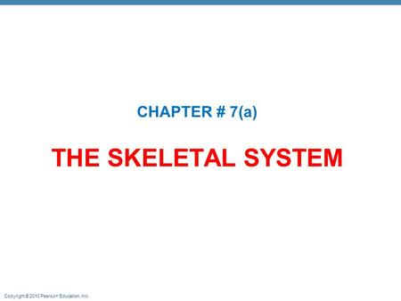 CHAPTER # 7(a) THE SKELETAL SYSTEM.