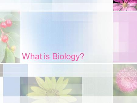 What is Biology? Biology = the study of life Bio- = life -logy = the study of Concepts, principles and theories that allow people to understand the natural.