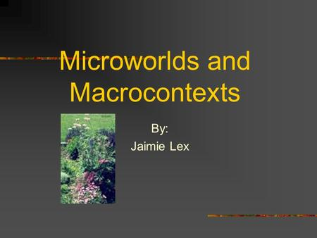 Microworlds and Macrocontexts By: Jaimie Lex. My Classroom The lesson plan that I am writing will apply to my High School Freshman and Sophomore students.