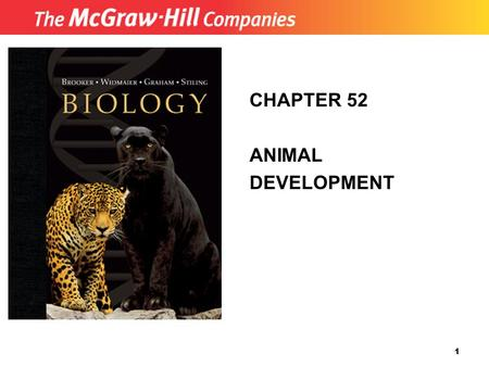 Copyright (c) The McGraw-Hill Companies, Inc. Permission required for reproduction or display. 1 CHAPTER 52 ANIMAL DEVELOPMENT.