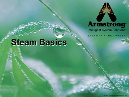 ©2008 Armstrong International, Inc. Steam Basics.