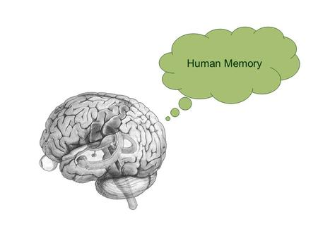 Human Memory. Part 1: D'you remember? Well, it depends…