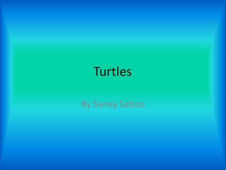 Turtles By Sanay Saboo. What are turtles? A turtle is a large marine reptile with a bony or soft shell that usually comes on the land to lay eggs. A turtle.