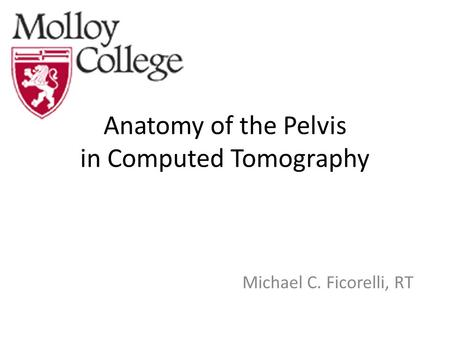 Anatomy of the Pelvis in Computed Tomography Michael C. Ficorelli, RT.