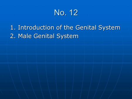 No. 12 1. Introduction of the Genital System 1. Introduction of the Genital System 2. Male Genital System 2. Male Genital System.