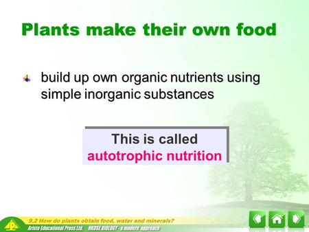 9.2 How do plants obtain food, water and minerals? build up own organic nutrients using simple inorganic substances Plants make their own food This is.