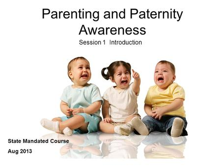 Parenting and Paternity Awareness Session 1 Introduction State Mandated Course Aug 2013.