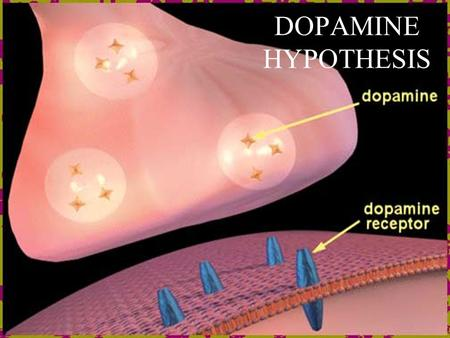 DOPAMINE HYPOTHESIS. LEARNING OBJECTIVES By the end of the lesson your goal is to be able to DescribeDescribe the role of Dopamine (DA) in schizophrenia.