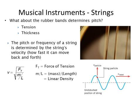 What about the rubber bands determines pitch? Musical Instruments - Strings  The pitch or frequency of a string is determined by the string's velocity.