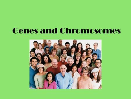 Genes and Chromosomes. Gene Segment of DNA whose sequence codes for a specific product – Examples: physical trait, RNA, enzymes etc. Genes are located.