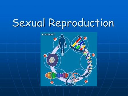 Sexual Reproduction. Cellular Reproduction There are 2 types of reproduction: Asexual Reproduction Asexual Reproduction Sexual Reproduction Sexual Reproduction.