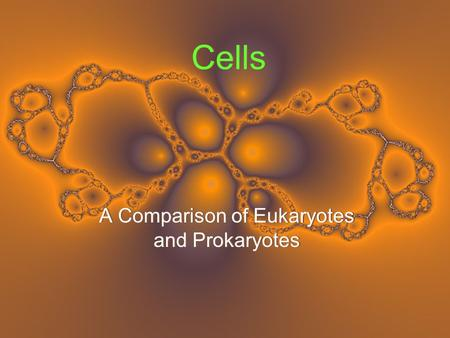 Cells A Comparison of Eukaryotes and Prokaryotes.