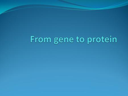 Gene to protein The two main processes that link the gene to protein are: RNA transcription and translation. The bridge between DNA and protein synthesis.
