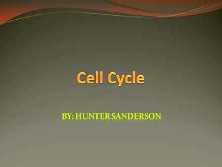 Cell Cycle By: Hunter Sanderson.