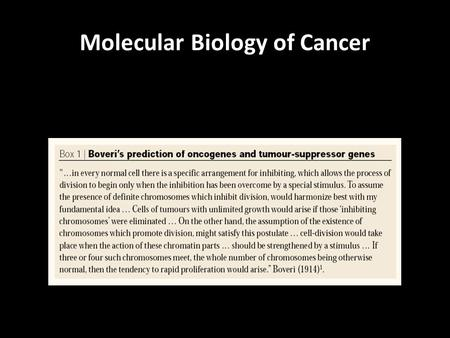 Molecular Biology of Cancer. CANCER TAKES TIME CANCER IS A DISEASE OF GENETIC MUTATIONS ACCUMULATION OF MANY MUTATIONS CAUSES CANCER.