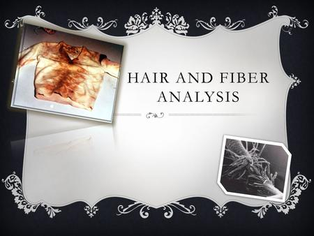 HAIR AND FIBER ANALYSIS.  Hair and fibers an help police identify if the hair belongs to a human or animal.
