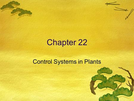 Chapter 22 Control Systems in Plants. 22.1 Hormones  Charles and Francis Darwin  Plant tip experiments.