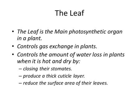 The Leaf The Leaf is the Main photosynthetic organ in a plant. Controls gas exchange in plants. Controls the amount of water loss in plants when it is.
