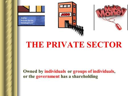 THE PRIVATE SECTOR Owned by individuals or groups of individuals, or the government has a shareholding.