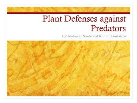 Describe How Natural Selection Can Affect Predator Prey Relationships